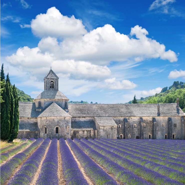 Klassenfahrt in die Provence